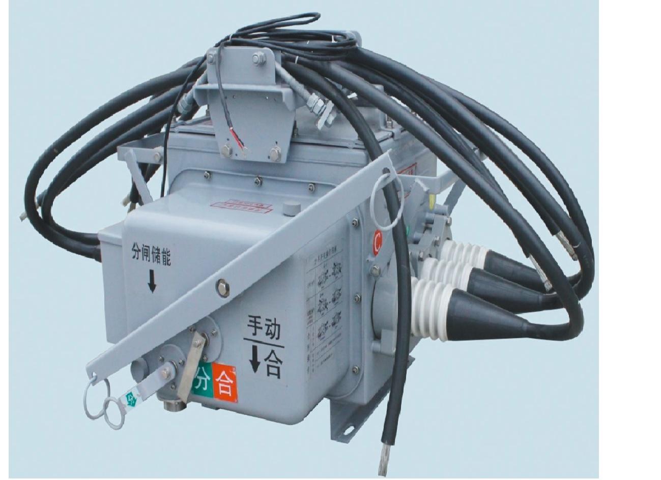戶外柱上高壓真空負荷開關FZW28-12/T630-25